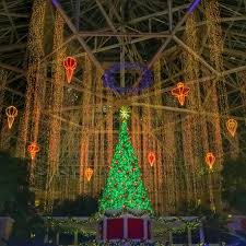 10 reasons to make ice at gaylord palms a part of your holiday