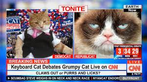 Keyboard Cat Meme - keyboard cat debates grumpy cat on cnn youtube