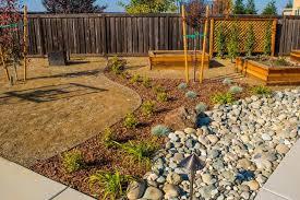 Drought Tolerant Backyard Ideas Best 20 Drought Tolerant Landscape Ideas On Pinterest Water With