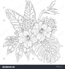 tropical flowers leaves page coloring book stock vector 443018272