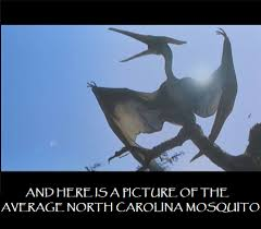 Mosquito Memes - 11 hilarious and relatable memes about north carolina
