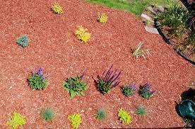 case study planting flower beds