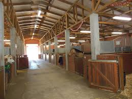 stables at val de vie estate a dream place for any horse