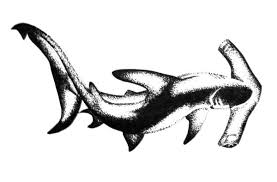amazing black and grey hammerhead shark tattoo design by aingealdorcha