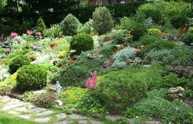 Backyard Hillside Landscaping Ideas Download Hillside Gardening Garden Design
