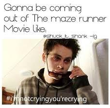 Runner Meme - maze runner memes im not crying your crying wattpad