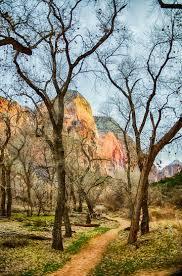 quotes zion national park 157 best zion national park images on pinterest beautiful places