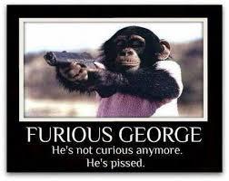 George Meme - curious george meme