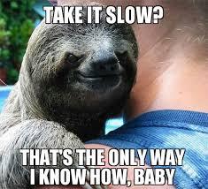 Sexy Sloth Meme - suspiciously sexy sloth imgur