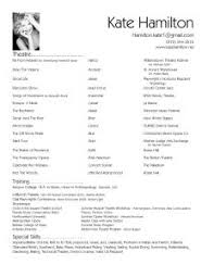 Sample Resume Usa by Examples Of Resumes Example Resume Format For It Professional Cv