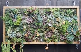 Urban Wall Garden - attractive vertical garden maintenance zero maintenance wall
