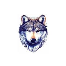 wolf wolf tattoos tribal wolf liked on