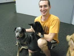 syracuse ny doggy daycare dog grooming u0026 dog training