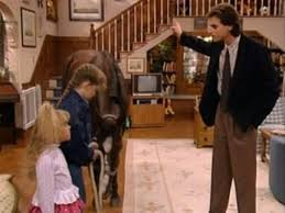 image house 204 u0027s horse 018 0001 jpg