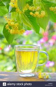 flowers in garden images cup with linden tea and flowers on wooden table in garden stock