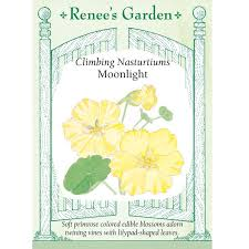 renee u0027s garden heirloom climbing nasturtium seeds moonlight