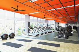 fitness design group solutions in wellness