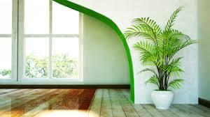 benefits of houseplants benefits of houseplants indoor gardening miracle gro