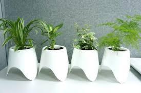 self watering pots diy self watering pots india online self