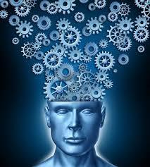si e des motions dans le cerveau 18 best cerveau images on the brain canvases and