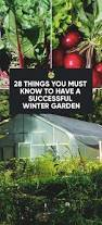 28 things you must know to have a successful winter garden