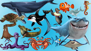 learn sea animals amazing sea animals names and sounds for kids