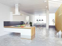 residential water damage flooded basement cleanup mold