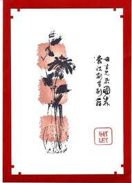 1120 best asian cards images on pinterest asian cards paper