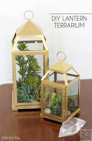 cheap lantern centerpieces 4 lantern 7 insanely beautiful succulent centerpieces to