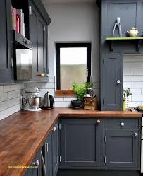 peinture cuisine grise couleur credence cuisine grise meilleur de 30 luxe peinture cuisine