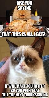 Thanksgiving Cat Meme - grumpy cat memes imgflip