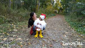 Halloween Chicken Costume Diy Halloween Chicken Costume Toddlers Denise Wild