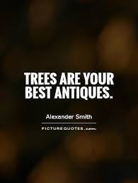tree quotes tree sayings tree picture quotes