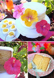 Tropical Themed Cake - butter hearts sugar tropical hibiscus birthday cake