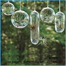 clear glass terrarium globe glass plant terrarium pear shape glass