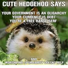 Cute Meme - 25 best memes about cute hedgehog cute hedgehog memes