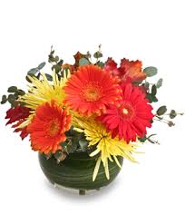 halloween flowers cary nc gcg flowers u0026 plant design
