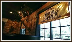 Design House Restaurant Reviews House Of Fauci U0027s Richter U0027s Antler Cafe House Of Fauci