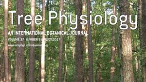 tree physiology oxford academic