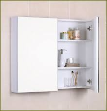 Stylish Entranching Wall Mounted Medicine Cabinet Without Mirror