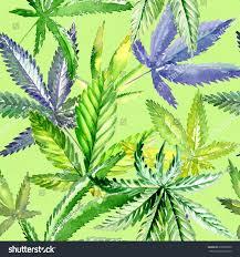 wildflower cannabis flower pattern watercolor style stock
