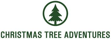 christmas tree adventures home