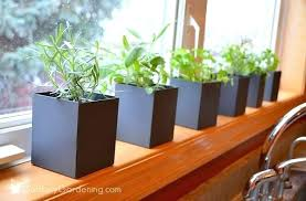 Window Sill Garden Inspiration Diy Window Herb Garden Greenhouse A Window Sill Herb Garden