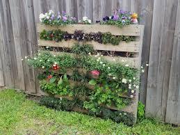 wooden pallet garden design creative outdoor pallet gardening