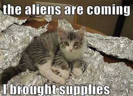 Cat Alien Meme - what a cute ball of fur 26th january 2014