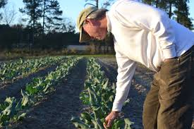 this tv farmer is helping put kinston nc on the map point of blue
