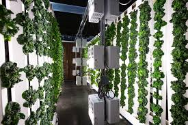 light mover hydroponic lighting is efficient in that 30 more area