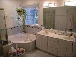 lovely houzz bathroom ideas home design apinfectologia