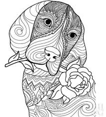 100 biscuit the dog coloring pages dog treats coloring pages