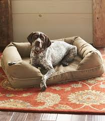Tempur Pedic Dog Bed Therapeutic Dog Couch Free Shipping At L L Bean